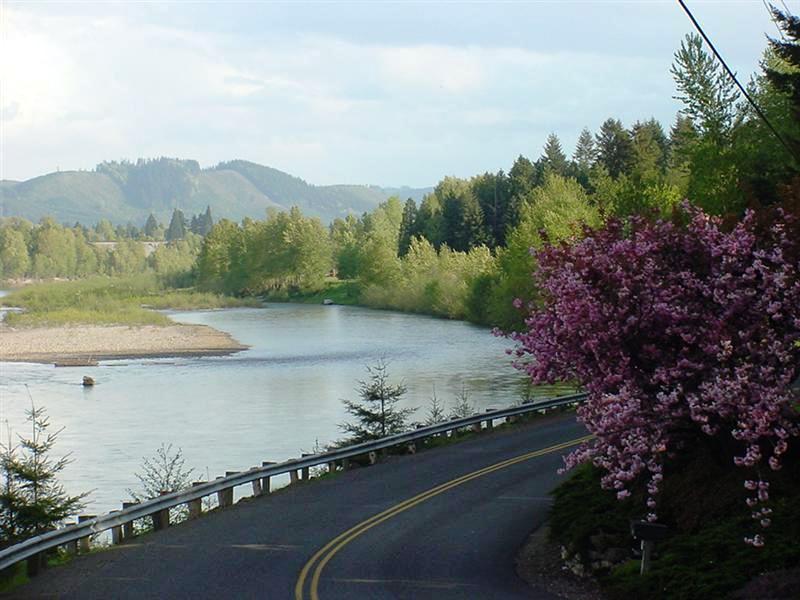 Cowlitz River
