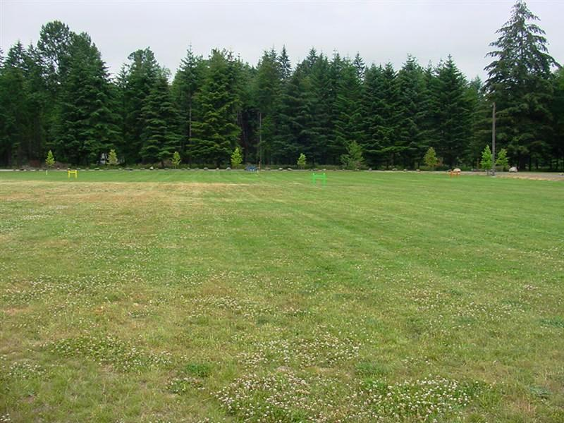 Open area for Croquet or Kite Flying or Whatever