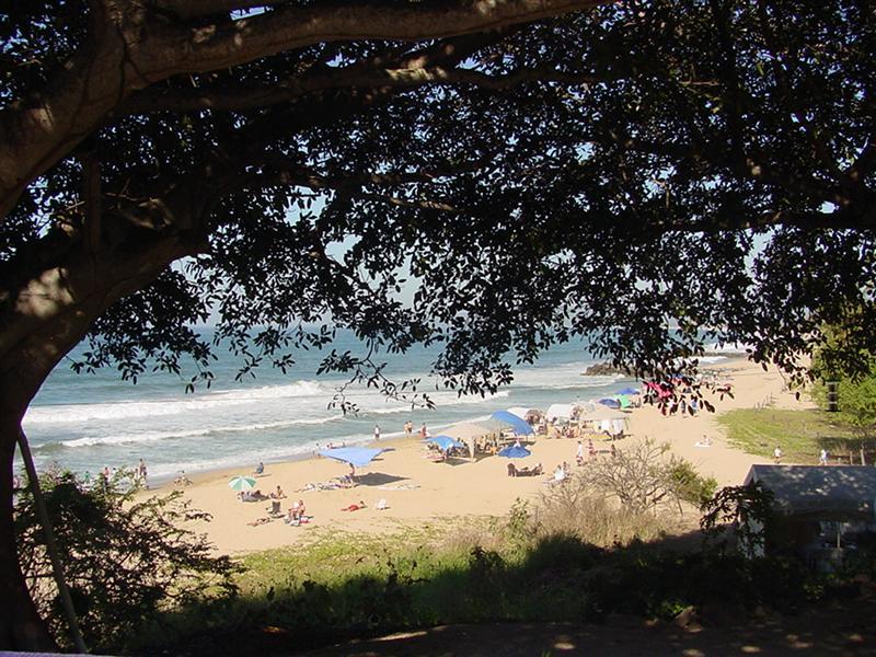 Our Park Beach