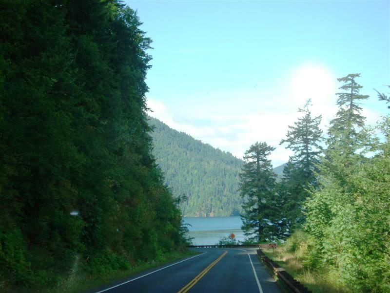 Road to Cape Flattery